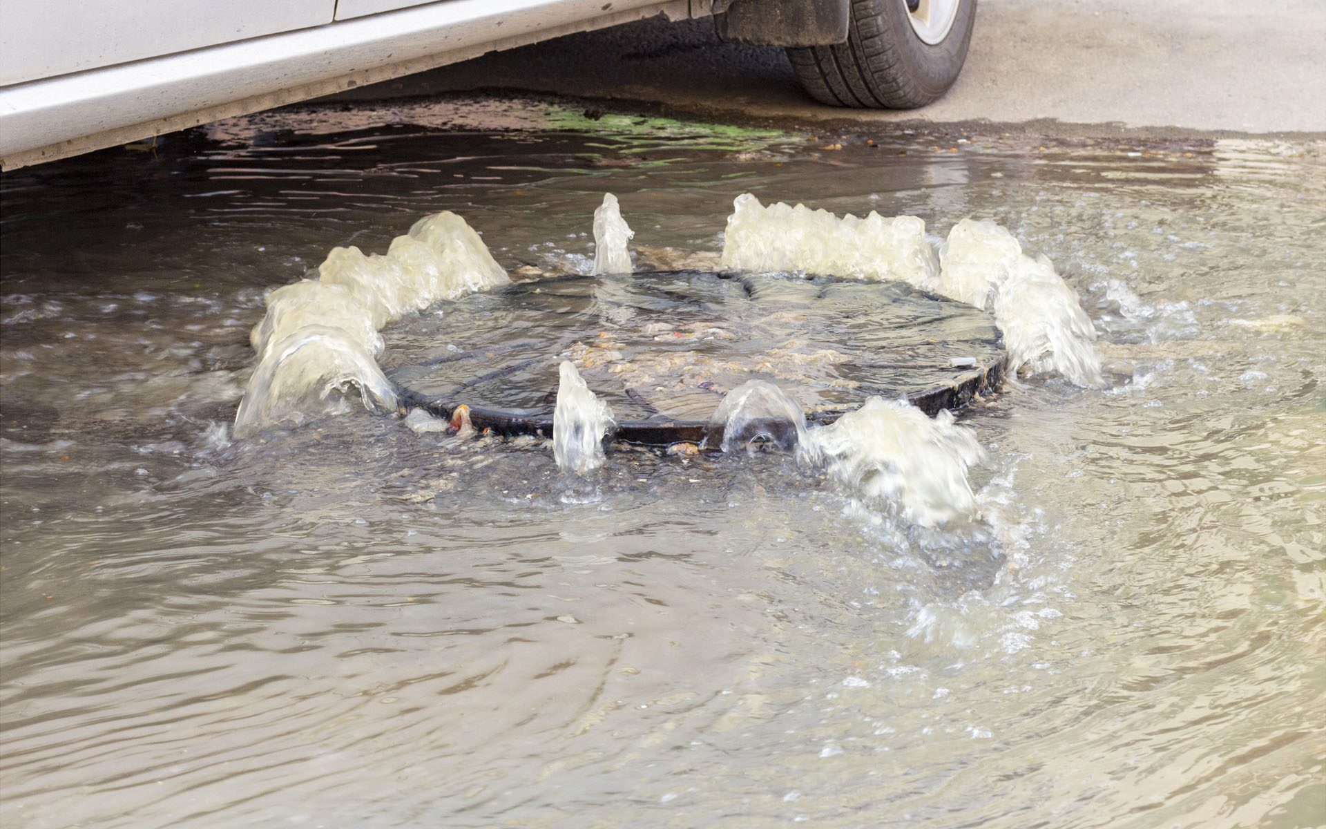 Everything You Need To Know About Flooding And Your Drains